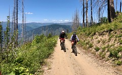 IMG_2758 (Doug Goodenough) Tags: bicycle bike cyle pedals spokes ebike bulls evo estream scott jen river selway idaho lookout mountain climb sun summer july 2019 gravel grinding drg531 drg53119 drg53119p drg53119pindianlookout forest canyon