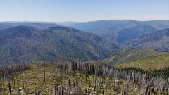 DJI_0295 (Doug Goodenough) Tags: bicycle bike cyle pedals spokes ebike bulls evo estream scott jen river selway idaho lookout mountain climb sun summer july 2019 gravel grinding drg531 drg53119 drg53119p drg53119pindianlookout forest canyon