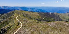 DJI_0305 (Doug Goodenough) Tags: bicycle bike cyle pedals spokes ebike bulls evo estream scott jen river selway idaho lookout mountain climb sun summer july 2019 gravel grinding drg531 drg53119 drg53119p drg53119pindianlookout forest canyon