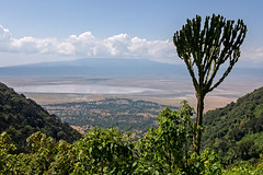 Ngorongoro Crater (Markus Hill) Tags: africa travel nature canon tanzania safari ngorongoro crater landscpae arusha krater tansania 2019