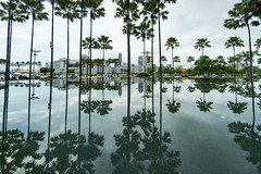 DSC06742 (AJui_Photography) Tags: 高雄 台灣 taiwan kaohsiung 夢時代