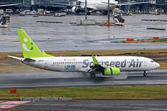 B737 JA810X SOLASEED AIR (shanairpic) Tags: jetairliner passengerjet b737 boeing737 tokyo haneda solaseedair ja810x