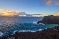 Sunrise from the Halona Blowhole Lookout - Oahu, Hawaii (J.L. Ramsaur Photography) Tags: sunrise sun sunrays sunlight sunglow orange yellow blue wherethemapturnsblue ocean bluewater blueoceanwater sea waves pacificocean lavarock lavarockcliffs landscape southernlandscape nature outdoors god'sartwork nature'spaintbrush god'screation sunrisefromthehalonablowholelookout halonablowholelookout sunrisefromthehalonablowhole halonablowhole japanesefishingshrine jlrphotography nikond7200 nikon d7200 photography photo oahuhi 25thanniversary honolulucounty hawaii 2019 engineerswithcameras islandsofhawaii photographyforgod hawaiianislands islandphotography screamofthephotographer ibeauty jlramsaurphotography photograph pic oahu tennesseephotographer oahuhawaii 25years anniversarytrip bucketlisttrip thegatheringplace 3rdlargesthawaiianisland 20thlargestislandintheunitedstates therainbowstate