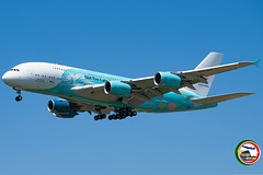 AIRBUS A380-841 9H-MIP (Rome Aviation Spotters) Tags: airbusindustrie hiflymalta savethecoralreefs a380841
