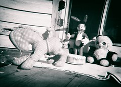 Vintage Teddy's (Crusty Da Klown) Tags: vintage teddys stuff stuffies retro mediumformat film bw black white monochrome toys outdoors outside patio lighting tones contrasts distortion oldfashioned old childish