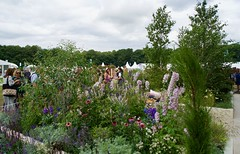 Photo of RHS Tatton Flower Show 2019