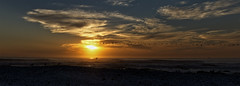 Time To Head Home (david.gill12) Tags: sunset birds clouds silhouettes beach sea sky colour