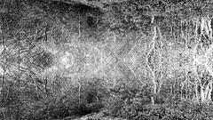 Do not get Lost... (Ody on the mount) Tags: abstrakt anlässe bäume canon g7xii geheimnis landschaft natur naturfotografie pflanzen powershot schwäbischealb spiegelung wald wanderung weg abstract bw geheimnisvoll landscape monochrome mystisch nature sw secret trees wasistdas ways whatisit woods pfullingen badenwürttemberg deutschland