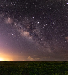 Everglades Milkyway (Fifinator) Tags: longexposure sky green night florida galaxy astrophotography everglades planets firefly cosmos fireflies milkyway canonsl2