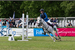 7R311732 (CekariYH) Tags: strömsholmsslott castle horse competition
