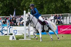 7R311734 (CekariYH) Tags: strömsholmsslott castle horse competition