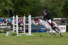 7R311797 (CekariYH) Tags: strömsholmsslott castle horse competition