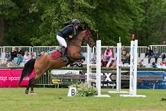 7R311843 (CekariYH) Tags: strömsholmsslott castle horse competition