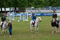 7R311962 (CekariYH) Tags: strömsholmsslott castle horse competition