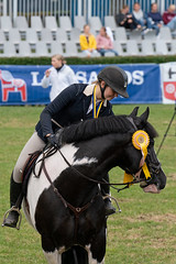 7R312029 (CekariYH) Tags: strömsholmsslott castle horse competition