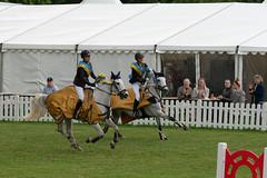 7R312110 (CekariYH) Tags: strömsholmsslott castle horse competition
