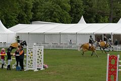 7R312112 (CekariYH) Tags: strömsholmsslott castle horse competition