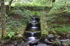 Long Exposure (Sophie Wolstenholme) Tags: longexposure fishladder nature devon dartmoor water nikond3500