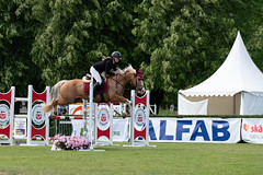 7R311710 (CekariYH) Tags: strömsholmsslott castle horse competition