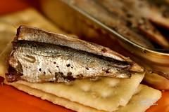 Sardines (James Milstid) Tags: fish macromondays sardines canonef100mmmacro canoneos70d macro kingoscar gonefishing crackers