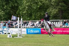 7R311741 (CekariYH) Tags: strömsholmsslott castle horse competition