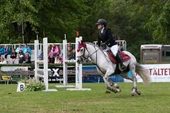 7R311798 (CekariYH) Tags: strömsholmsslott castle horse competition