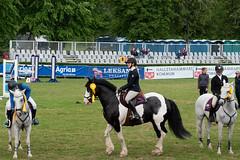7R312000 (CekariYH) Tags: strömsholmsslott castle horse competition