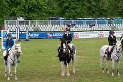 7R312009 (CekariYH) Tags: strömsholmsslott castle horse competition