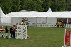 7R312107 (CekariYH) Tags: strömsholmsslott castle horse competition