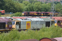 60088 (lcfcian1) Tags: toton railways trains depot ews db totondepot nottinghamshire train tracks rails diesels railyard 60088 class60 60