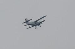 German Plane over the nature reserve (ray 96 blade) Tags: springwatch wildlife birds whitethroat foxy germanplane groveferry nnr minsterfox kent