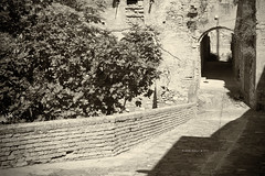Aliano II (iSalv) Tags: canon eos 1dmarkiii italia italy basilicata lucania aliano carlolevi lightroom ps silverefexpro2 helios 58mm f2 adapter eostom42 pdc maf dof natura nature imac