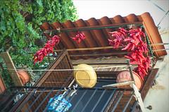 Cruschi (iSalv) Tags: canon eos 1dmarkiii italia italy basilicata lucania aliano lightroom ps helios 58mm f2 adapter eostom42 pdc maf dof color colori natura nature imac