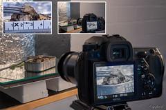 "Making of  ""Gone Fishing"" (Digifred.nl) Tags: macromondays gonefishing digifred 2019 hmm nederland netherlands nikond500 makingof macro macrophotography closeup vis visinblik sardine sardientjes"