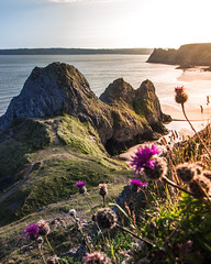 Sunlight flooding into Three Cliffs Bay (Daniel Bradshaw Multimedia) Tags: pennard thegower gower mumbles southwales wales seaside beach cliffs water waves thomasheaton flowers wideangle countryside southgate swansea