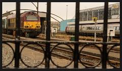 When in Holyhead.... (peterdouglas1) Tags: holyheadstation wag transportforwales class67 67016 dbcargo ews gates virgintrains voyager vossloh skips