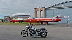 The Aviator.. (Harleynik Rides Again.) Tags: harleydavidson 100th anniversary deuce fxstd oldsarum aircraft testpilotschool aviator harleynikridesagain