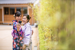 Young female friends in yukata taking selfie picture in public park (Apricot Cafe) Tags: imgr27672 asia asianandindianethnicities japan japaneseethnicity japaneseculture kimono millennialgeneration sawarakatori bamboo buildingexterior carefree chibaprefecture copyspace cultures day enjoyment friendship green happiness leisureactivity lifestyles nature outdoors people photographing photography publicpark realpeople selfie sightseeing smartphone smiling student summer threequarterlength togetherness toothysmile tourism tourist traditionalclothing travel traveldestinations twopeople unescoworldheritagesite youngadult youngwomenonly youthculture yukata