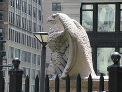 2019 American Bald Eagle Statue - Madison Square Garden 6302 (Brechtbug) Tags: 2019 american bald eagle statue near madison square garden 7th avenue new york city 07212019 bird sculpture former location borders books store nyc stone originally from old pennsylvania penn station torn down 1963