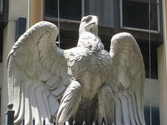 2019 American Bald Eagle Statue - Madison Square Garden 6292 (Brechtbug) Tags: 2019 american bald eagle statue near madison square garden 7th avenue new york city 07212019 bird sculpture former location borders books store nyc stone originally from old pennsylvania penn station torn down 1963