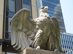 2019 American Bald Eagle Statue - Madison Square Garden 6286 (Brechtbug) Tags: 2019 american bald eagle statue near madison square garden 7th avenue new york city 07212019 bird sculpture former location borders books store nyc stone originally from old pennsylvania penn station torn down 1963