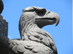 2019 American Bald Eagle Statue - Madison Square Garden 6283 (Brechtbug) Tags: 2019 american bald eagle statue near madison square garden 7th avenue new york city 07212019 bird sculpture former location borders books store nyc stone originally from old pennsylvania penn station torn down 1963