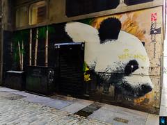 Panda (Ibrahim D Photography) Tags: panda mural streetart klingatron glasgowstreetart glasgow graffitti jamesklinge streetartist artist art urbanart graffittiart