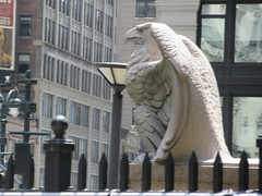 2019 American Bald Eagle Statue - Madison Square Garden 6303 (Brechtbug) Tags: 2019 american bald eagle statue near madison square garden 7th avenue new york city 07212019 bird sculpture former location borders books store nyc stone originally from old pennsylvania penn station torn down 1963