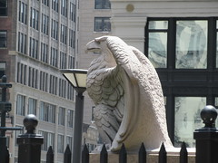2019 American Bald Eagle Statue - Madison Square Garden 6301 (Brechtbug) Tags: 2019 american bald eagle statue near madison square garden 7th avenue new york city 07212019 bird sculpture former location borders books store nyc stone originally from old pennsylvania penn station torn down 1963