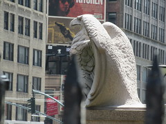 2019 American Bald Eagle Statue - Madison Square Garden 6300 (Brechtbug) Tags: 2019 american bald eagle statue near madison square garden 7th avenue new york city 07212019 bird sculpture former location borders books store nyc stone originally from old pennsylvania penn station torn down 1963