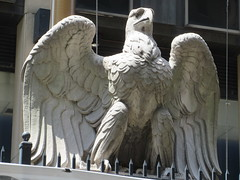 2019 American Bald Eagle Statue - Madison Square Garden 6291 (Brechtbug) Tags: 2019 american bald eagle statue near madison square garden 7th avenue new york city 07212019 bird sculpture former location borders books store nyc stone originally from old pennsylvania penn station torn down 1963