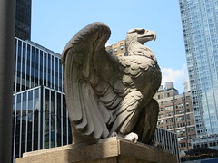 2019 American Bald Eagle Statue - Madison Square Garden 6280 (Brechtbug) Tags: 2019 american bald eagle statue near madison square garden 7th avenue new york city 07212019 bird sculpture former location borders books store nyc stone originally from old pennsylvania penn station torn down 1963