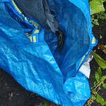 RSPCA to investigate after dead heron found wrapped in IKEA bag thumbnail
