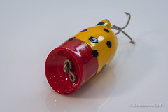 Popper (Desdanova) Tags: stockton california unitedstatesofamerica fishing black yellow macro macromondays lure red gonefishing